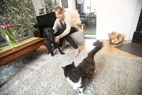 Naapuruussovittelija Hanna Vuorisella ei ole toimistoa, vaan hän tekee taustatyöt kotonaan ja tapaa ihmiset heidän kotonaan. Kuvassa Vuorisen koira Simo ja kissa