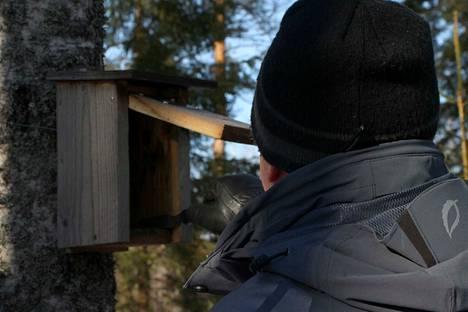 Linnunpönttöjen paras puhdistamisaika on maalis-huhtikuussa ja pienessä pakkaskelissä, mikä vähentää lintukirppujen pöllähtämistä puhdistajan päälle.