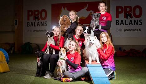Tampereen Seudun Koirakerhon edustajat näyttävät taitonsa European Open Junior -kisojen radoilla.