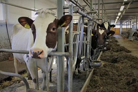 Kotieläimiä, kuten karjataloutta hoidetaan joka ikinen päivä. Eläimiä pitävä maatalousyrittäjä voi pitää lomapäiviä vain, jos eläimiä hoitamaan löytyy pätevä lomittaja. Ammattilomittajista on jatkuva pula.