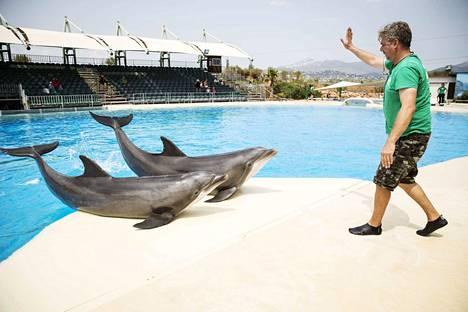 Kuvassa Eevertti ja Leevi delfiiniesityksessä vuonna 2017. Nyt esitykset on kielletty Attican eläintarhassa.