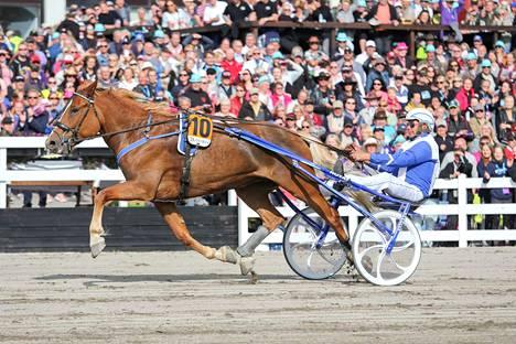 Olavi Oja-Nisulan Sävel-Taika osallistuu neljännen kerran Marinka-ajoon, minkä kaksinkertainen ravikuningatarkisan kakkonen voitti kolme vuotta sitten.