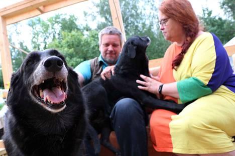 Petri ja Satu Grönroosilla on kaksi koiraa, Reiska ja Namibia. Ne pitävät huolen siitä, ettei kukaan tule Grönroosien kotiin huomaamatta.