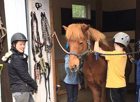 Satu Lindstedin hevosavusteisia palveluita tarjoavalla tallilla oppilaat pääsivät tutustumaan tallin toimintaan ja hoitamaan hevosia.