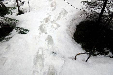Kuka kertoisi Mäntänvuorelle, että lunta ei enää ole? Kuva on otettu 26. huhtikuuta.