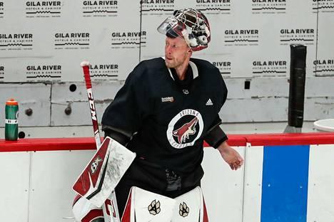Antti Raannan Arizona Coyotes osallistuu ensimmäistä kertaa koskaan NHL:n pudotuspeleihin nykyisellä nimellään.