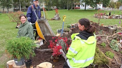 Minimetsää on istutettu vapaaehtoisten ja kaupungin puisto-osaston yhteistyönä. Torstaina vapaaehtoistyöntekijä Kari Keinonen toi multaa kaupungin puistotyöntekijä Karin Mäkiselle, keskellä taiteilija Nina Backman, jonka idea Minimetsä on.