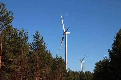 Pitkälänvuoren rakennuskiellon tavoitteena on varmistaa alueen säilyminen muuttumattomana tuulivoimahankkeen suunnittelun ajan. Kuvituskuva.