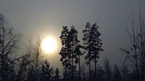 Valon lisääntyminen kertonee kevään jo pian koittavan.