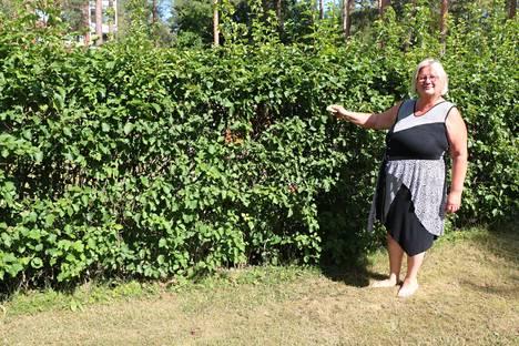 Koulunkäynnin ohjaaja, puutarhuri, erityisavustaja, kaupan myyjä, toimittaja, maatalon emäntä – Anne Tuomikosken työura on ollut poikkeuksellisen vivahteikas.