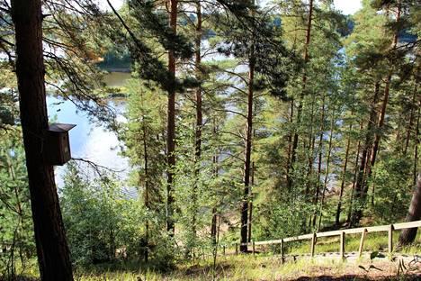 Pohjavesikartoitus auttaa suojelemaan arvokasta pohjavesialuetta Kokemäenjoen varressa Viikkalan ja Pirilän välisellä alueella Nakkilan ja Harjavallan välillä. Arkistokuva Pirilän rantamaisemista.