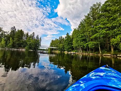 Veden laatua ja sinilevän määrää tarkkaillaan vakituisilla tarkkailupisteillä, joista yksi on Valkeakoskella Vanajaveden ja toinen Mallasveden puolella. Kansalaiset voivat itsekin lisätä havaintojaan Järviwikiin, jossa sinilevän määrää seurataan.