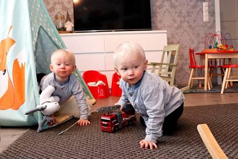 Eelis ja Leevi Koivisto täyttävät huhtikuussa kaksi vuotta. Äidin mukaan heitä ei ole tarvinnut viihdyttää sen jälkeen, kun he oppivat kävelemään.