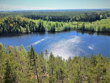 Luontopääoma on puutteellisesti arvotettua ja sen arvo tulee kasvamaan, toteaa elinvoimaraportin tehneen WSP Finlandin johtava asiantuntija Terhi Tikkanen-Lindströn. Tämä kuva on otettu viime keväänä Suodenniemellä.