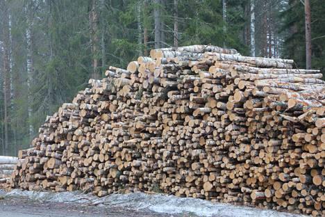 Viime vuonna satakuntalaisille metsänomistajille kertyi metsänhoitoyhdistyksen mukaan puukauppatuloja noin 26,4 miljoonaa euroa.