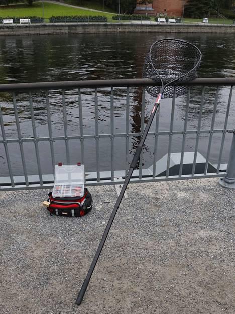 Pitkävartinen haavi on ehdoton varuste Tammerkoskella kalastaessa.