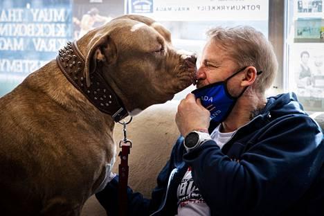 Pertti Nurmen reilu 3,5-vuotias amerikanbully Chapo on isäntänsä paras kaveri. Siitä lähtien, kun Nurmi toi koiran puolivuotiaana kotiinsa, Chapo on seurannut häntä liki kaikkialle.