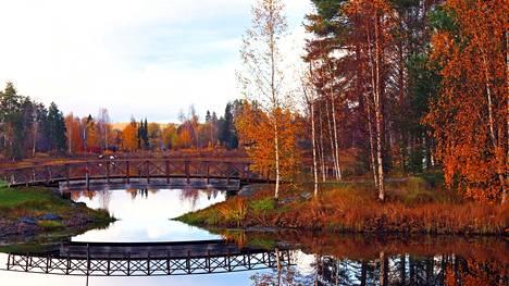 Kurkisaareen johtava silta syksyn ympäröimänä.