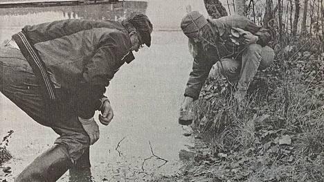 Aulis Rampanen havaitsi Iso-Kangasjärvestä levää, jonka ympäristönsuojelusihteeri Eeva Jokikokko totesi sinileväksi.