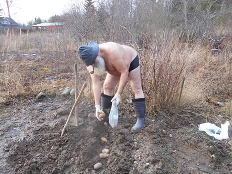 Matti Malmi pisti jo potut maahan. Mahtaako tulla satoa?