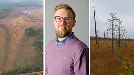 Heikki Ojaniemen johtama tamperelaisyritys osti 260 hehtaaria suometsää viime kesänä. Näin yritys varmisti, että alue säilyy luonnontilaisena eikä sieltä esimerkiksi nosteta turvetta.