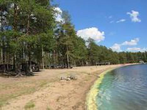Hiekkarannat ovat kilometrejä pitkät Pyhäniemen alueella.