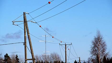 Keskijännitelinjaan kiinnitetyillä palloilla yritetään torjua lintujen törmäämistä sähkölankoihin.