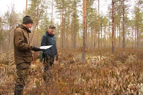 Arkistokuvassa A. Ahlström Kiinteistöt Oy:n metsänhoitoesimies Kaarlo Peltomaa ja metsäjohtaja Timo Viinamäki esittelevät kasvuturpeen nostoon suunniteltua Haukisuon aluetta.