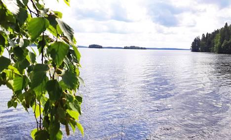 Kirjoittaja kertoo esimerkin, kuinka metsämaisema on elävä ja muuttuu, myös Keurusselän saarilla.