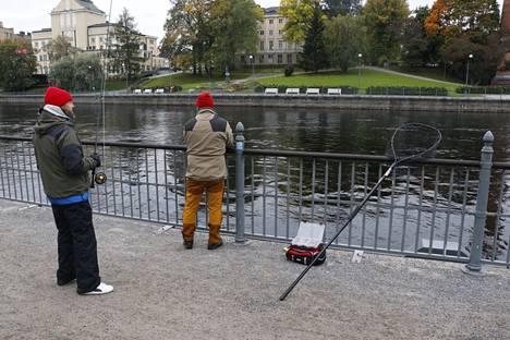 Jari Vuolle (vas.) ja Raimo Piirainen toivovat kaupungin lisäävän mahtavan kalapaikan markkinointia. He kertoilevat paikasta jatkuvasti ihmetteleville turisteille.