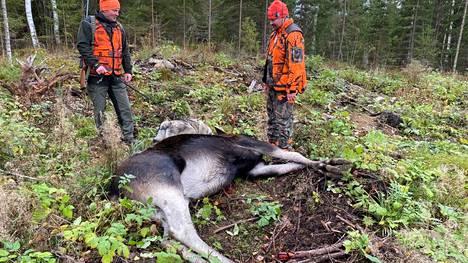 Sami Anttila (vas.), Mika Paananen ja päivän ensimmäinen saalis. Sen kanssa tekee tuttavuutta myös hirveä ajanut Kiira-koira.