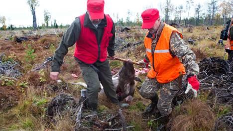 Paras tapa estää koirien ja ihmisten ekinokokkitartuntoja on hävittää metsästyspaikkojen teurasjätteistä hirvien keuhkot niin, etteivät koirat ja villit petoeläimet pääse niitä syömään.