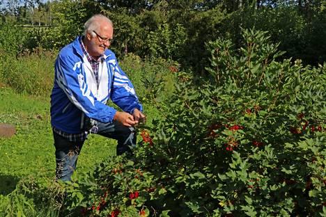 Eläkeliiton Honkajoen yhdistyksen puheenjohtaja Olavi Kivioja katsoo, että paikallisille yhdistykselle on kuntaliitoksen jälkeen entistä kovempi tilaus honkajokisen identiteetin rakentajana.