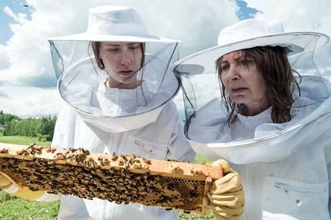 Mehiläiskesän pääosia näyttelevät Heli Hyttinen ja Irina Pulkka. Sivuosissa Jarmo Perälä, Miia Selin, Ilkka A. Jokinen sekä siurolaiset mehiläiset.