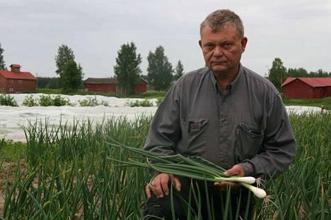 Nakkilalainen Pasi Eskolin viljelee muun muassa sipulia. Viljelijä ehti kuvaan kesken vuoden kiireisimmän viikon, nyt juhan    nuksen jälkeen tahti hellittää hieman.