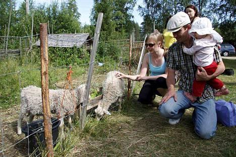 Lasten puuhapäivänä Kallenaution Kestikievarissa Juupajoella paikalla on paljon eläimiä, muun muassa lampaita.