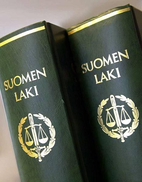 Kirjoittajan mukaan raiskaajat pitäisi karkottaa maasta ja vankilalta näin säästyvät rahat antaa raiskatulle.