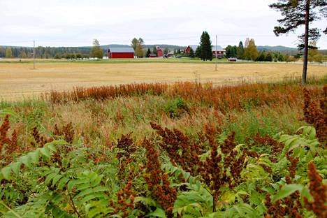 Vaissi oli yksi tila, jossa koululaiset kävivät tutustumassa maatilan toimintaan.