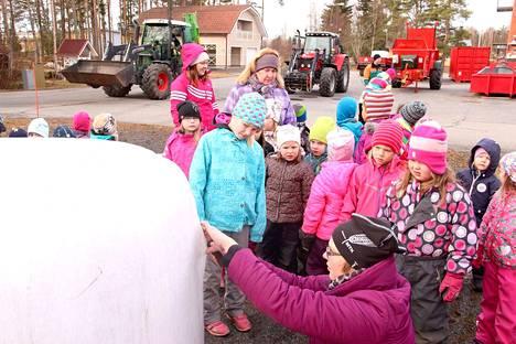 MTK-Merikarvian puheenjohtaja Milla Riihiaho avasi paalin kylkeä, jotta lapset saivat nähdä, miltä nuo pelloilla näkyvät valkoiset pallerot näyttävät sisältä.