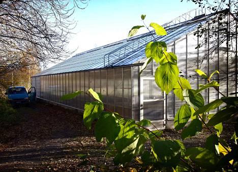 Tontilla sijaitsee myös kasvihuone, joka kuuluu kauppaan.