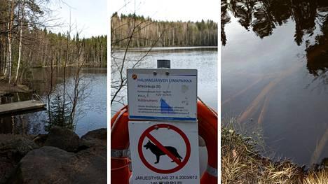 Tampereen kaupungin uimarantojen pitäisi olla kunnossa 1. kesäkuuta alkaen. Myös samentuneen Halimasjärven uimarannan tulisi olla siihen mennessä kunnossa.