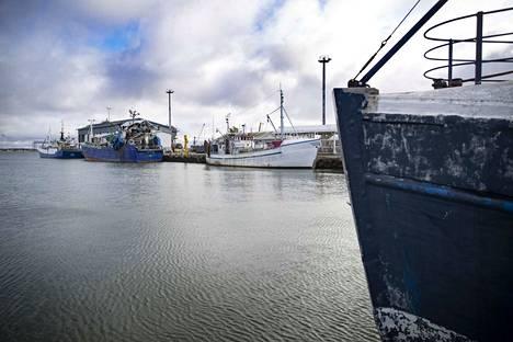 Reposaaren lajittelu ja fileointi Oy sijoittuu kalasatamassa sijaitsevaan Porin kaupungin omistuksessa olevaan rakennukseen. Fileointikoneita asennetaan parhaillaan.