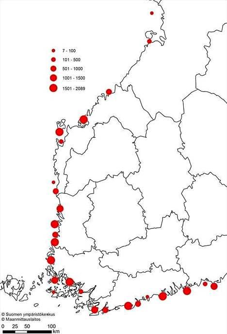 Merimetson alueelliset pesämäärät (kpl) vuonna 2019.