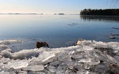 Kulunut talvi oli ennätyslauha. Kuva Päijänteeltä Kuhmoisista. Lukijan kuva.