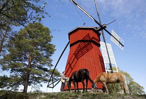 Tanja Koski hankki Semmi- ja Niilo-hevoset viettämään eläkepäiviään Euraan.