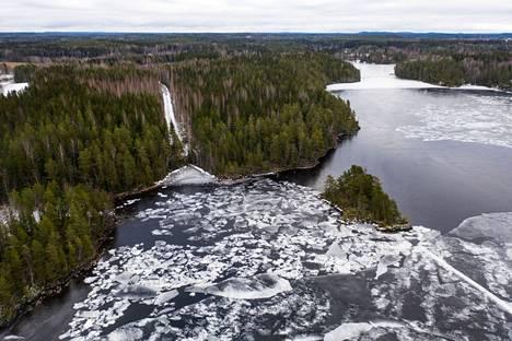 Ahtojäitä Teiskon Koljonselällä keväällä 2020. Oikealla jääkannen alla Koljonselältä Maisansaloon johtava Polsonlahti.
