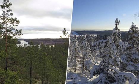 Sama paikka tammikuussa eri vuosina.