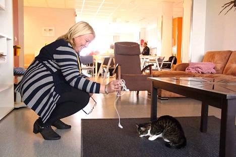Viiru-kissa asuu Sofiakylän yhteisissä tiloissa. Asukkailla on omat huoneensa.