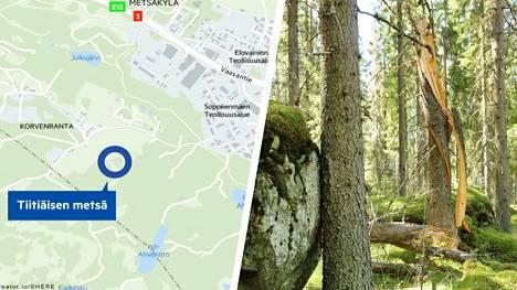 Tiitiäisen metsä sijaitsee noin 20 minuutin ajomatkan päässä Tampereelta, lähellä Ylöjärven Pikku-Ahvenistoa.