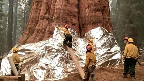 Kenraali Shermanin rungon ympärille kiedottiin torstaina tulenkestäviä peitteitä, joiden tarkoitus on suojata puuta pahimmilta liekeiltä.
